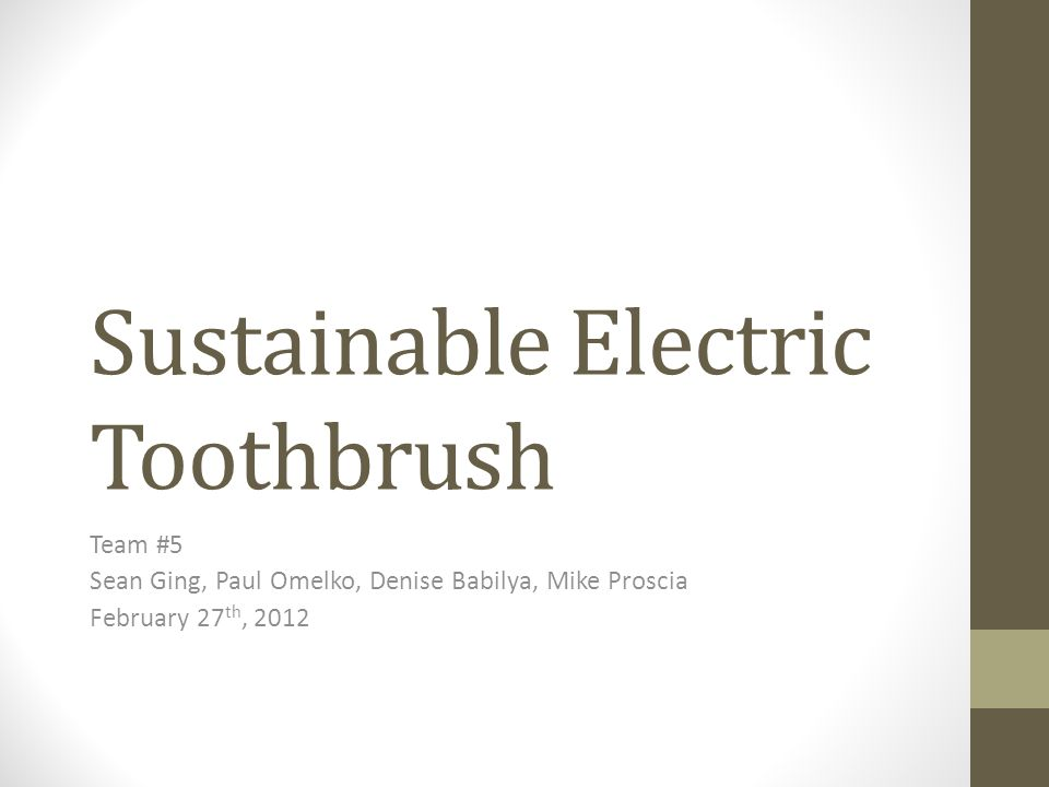 Sustainable Electric Toothbrush