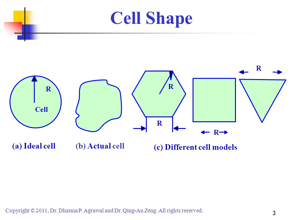Cell Shape (c) Different cell models (a) Ideal cell (b) Actual cell R