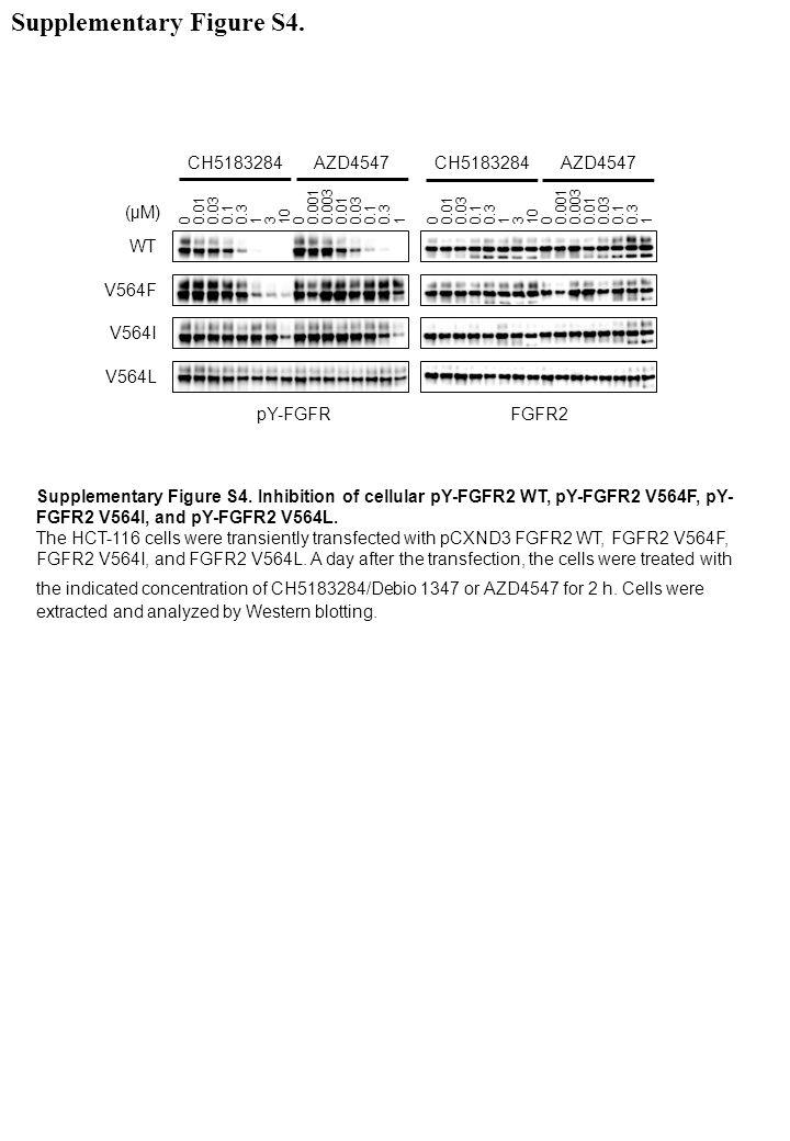 Supplementary Figure S4.