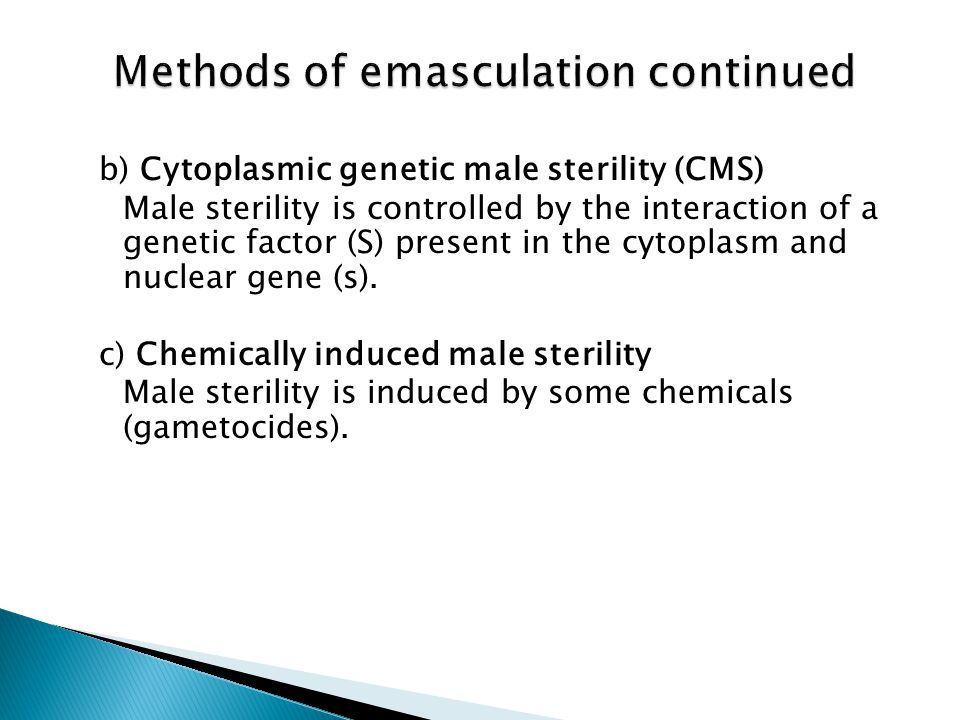 Methods of emasculation continued
