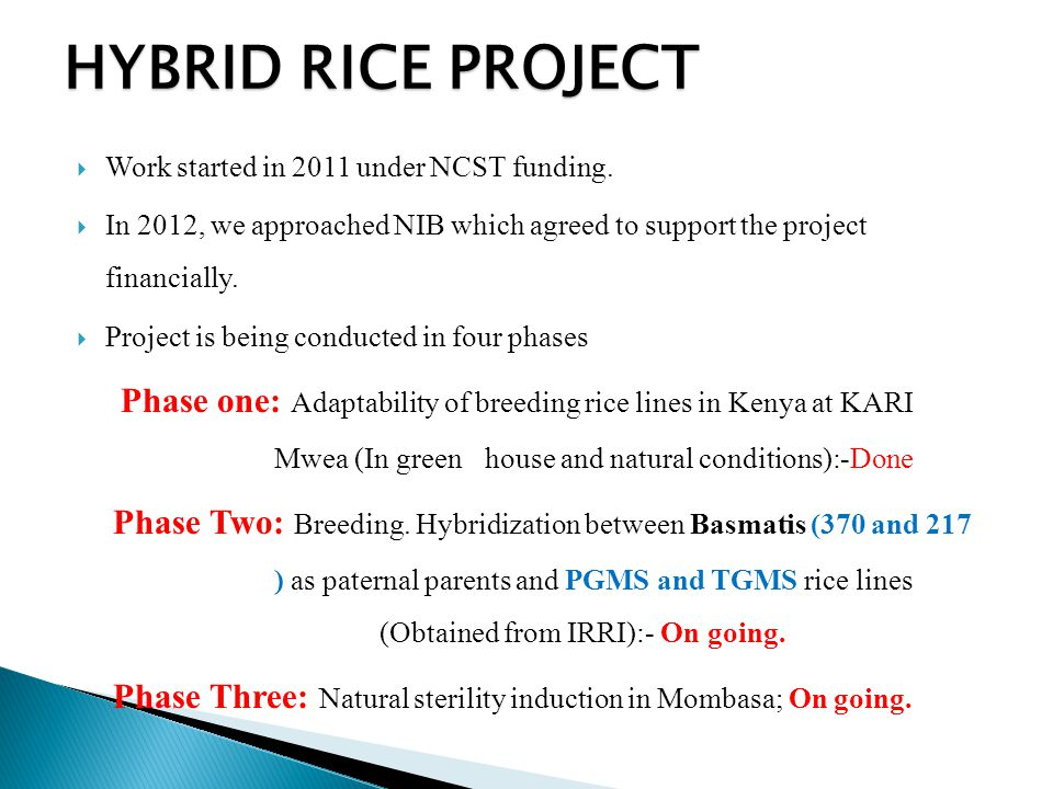 HYBRID RICE PROJECT Work started in 2011 under NCST funding.