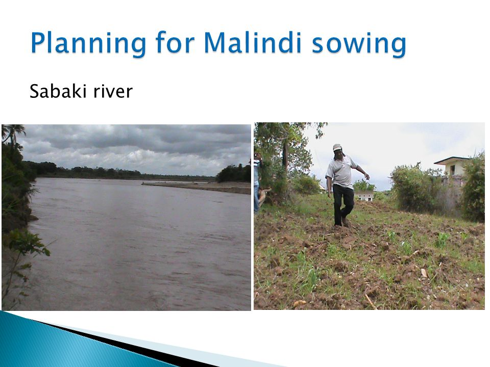 Planning for Malindi sowing
