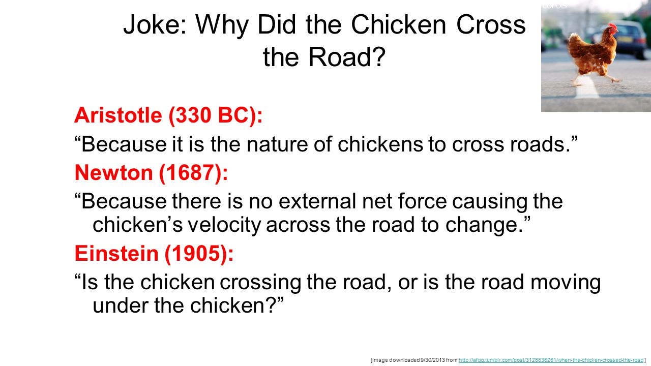 Joke: Why Did the Chicken Cross the Road