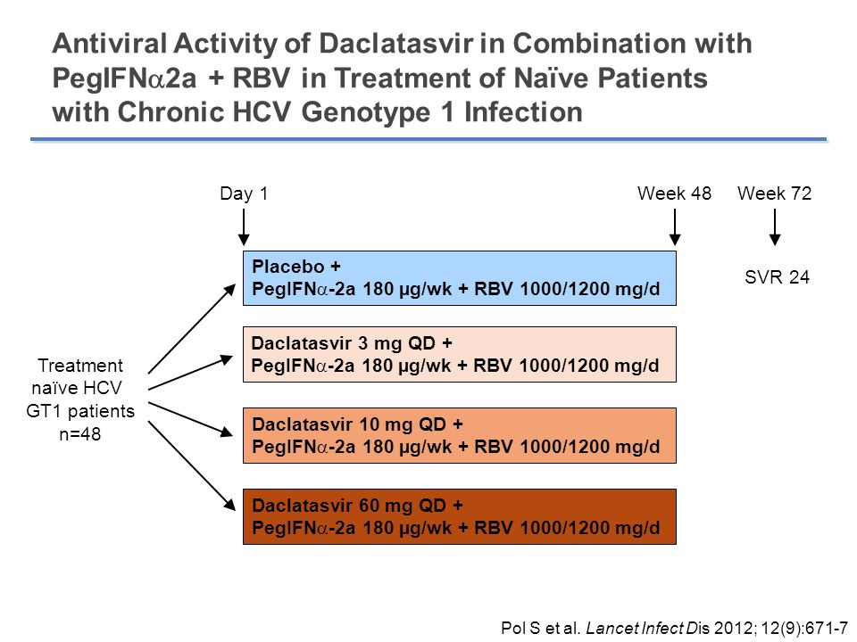 Antiviral Activity of Daclatasvir in Combination with PegIFN2a + RBV in Treatment of Naïve Patients with Chronic HCV Genotype 1 Infection