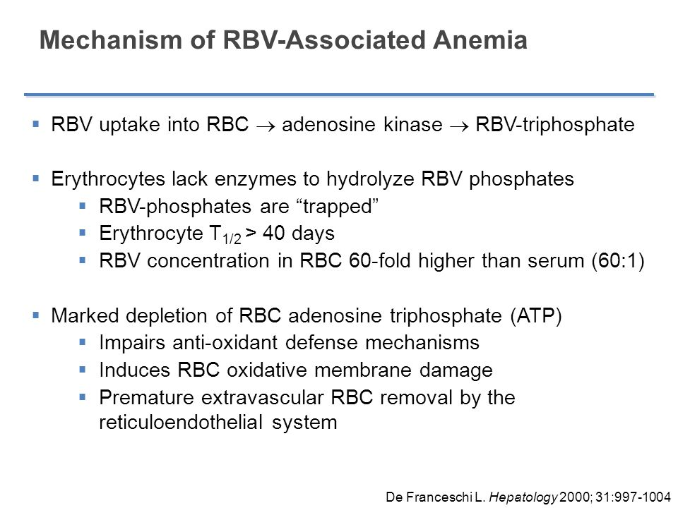 Mechanism of RBV-Associated Anemia