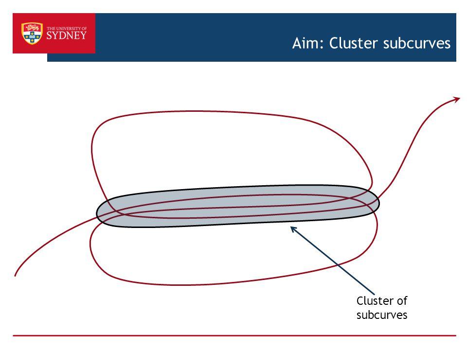 Aim: Cluster subcurves