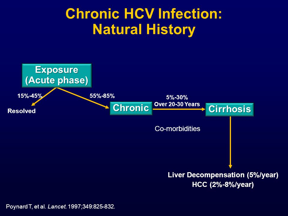Chronic HCV Infection: Natural History