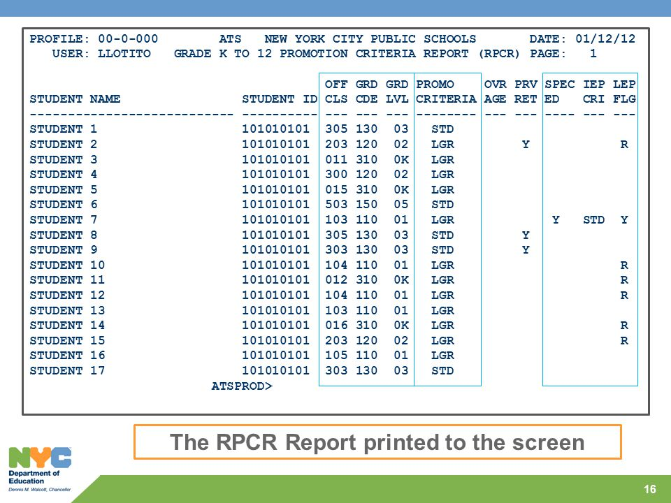 The RPCR Report printed to the screen