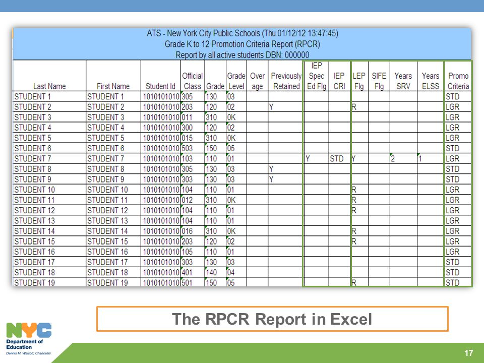The RPCR Report in Excel