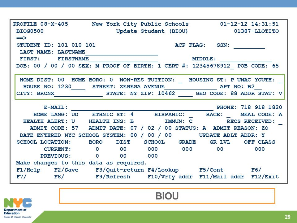 BIOU PROFILE 08-X-405 New York City Public Schools 01-12-12 14:31:51