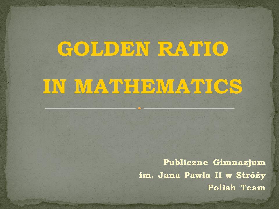 Publiczne Gimnazjum im. Jana Pawła II w Stróży Polish Team