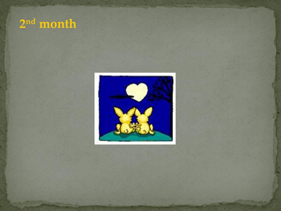 2nd month Jedna para niezdolna jeszcze do rozmnażania