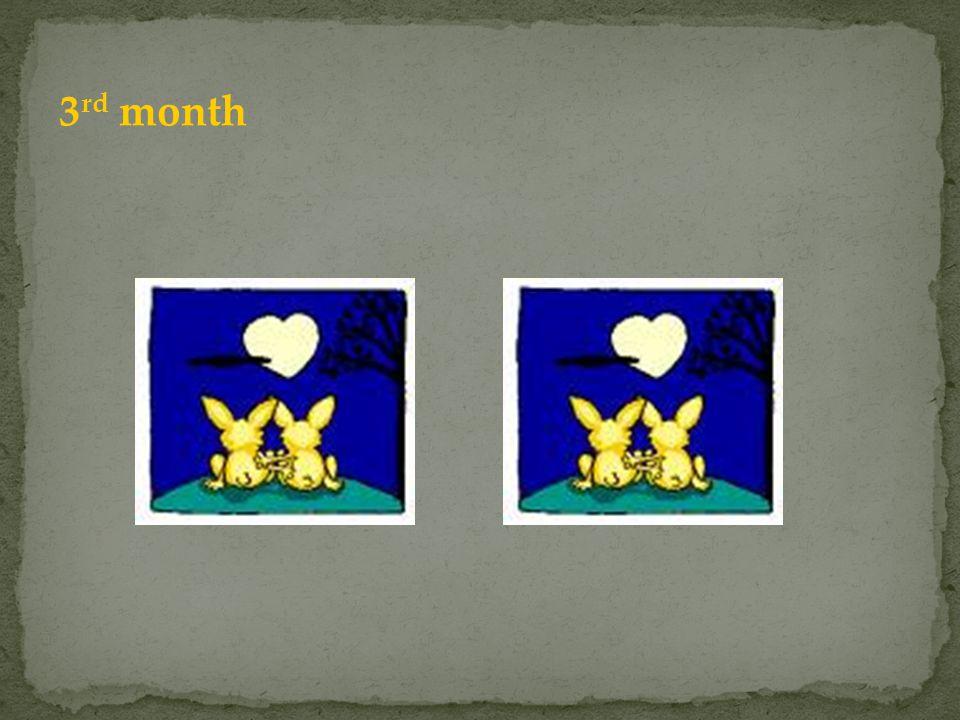 3rd month Jedna para urodziła już nowa parę