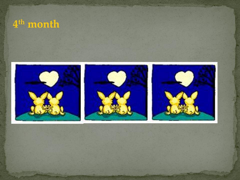 4th month Para rodzi kolejną parę, a ta urodzona miesiąc wcześniej jeszcze nie może się rozmnażać