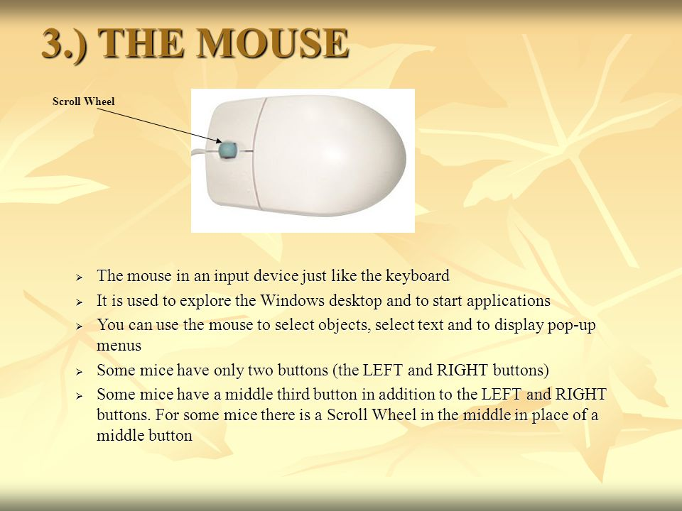 3.) THE MOUSE The mouse in an input device just like the keyboard