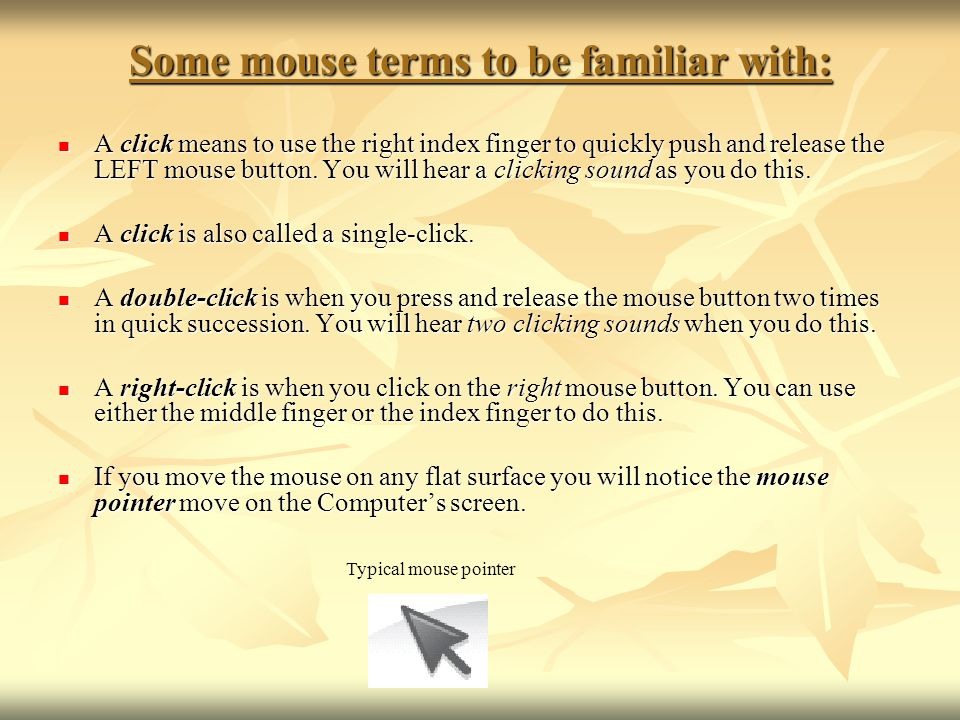 Some mouse terms to be familiar with: