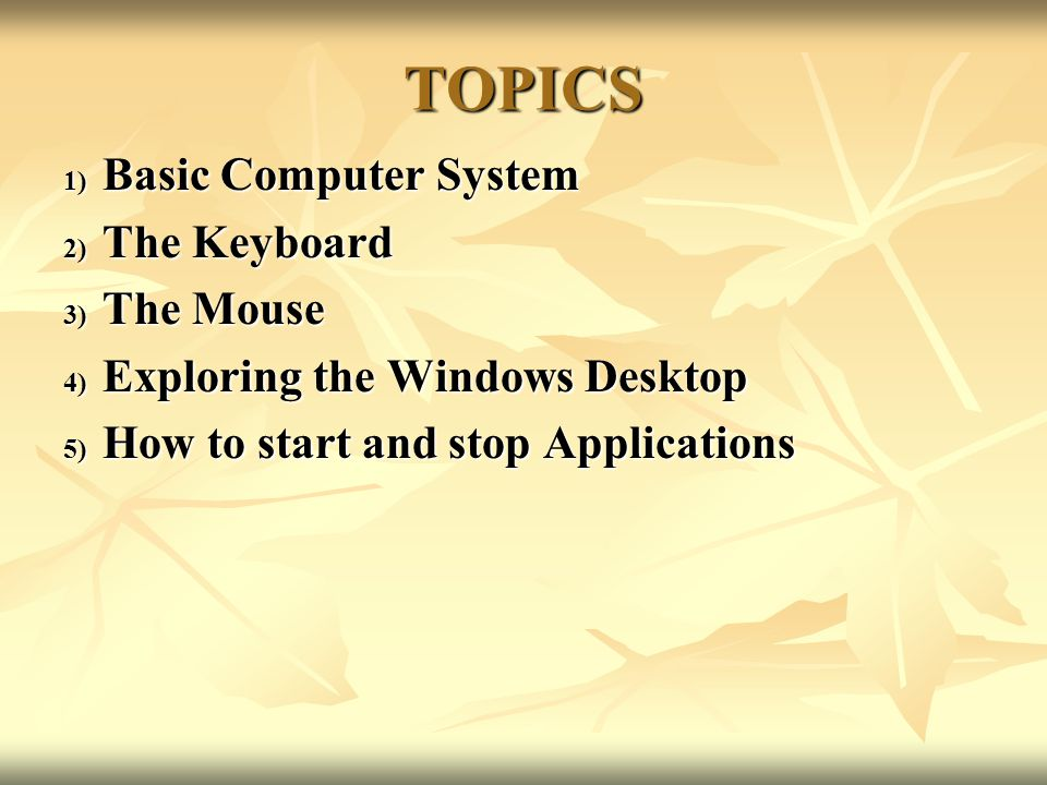 TOPICS Basic Computer System The Keyboard The Mouse