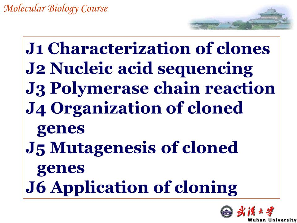 J1 Characterization of clones J2 Nucleic acid sequencing