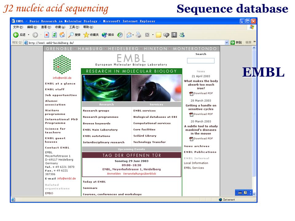 Sequence database J2 nucleic acid sequencing EMBL