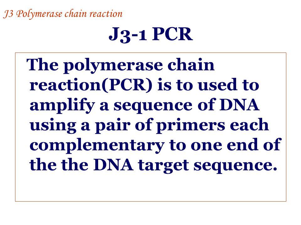 J3 Polymerase chain reaction
