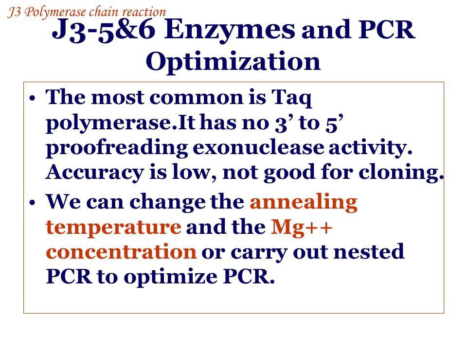 J3-5&6 Enzymes and PCR Optimization
