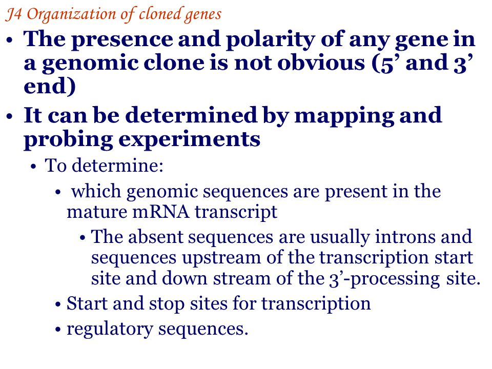 It can be determined by mapping and probing experiments