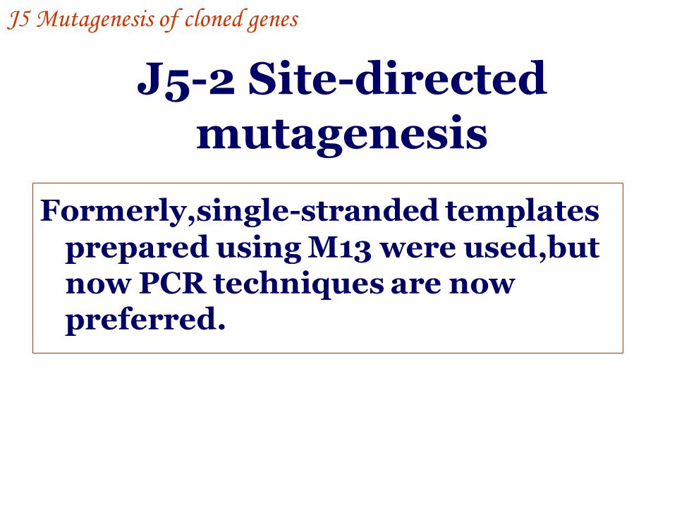 J5-2 Site-directed mutagenesis