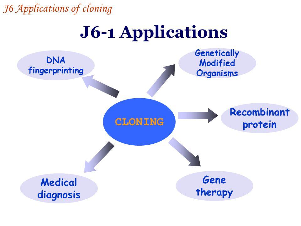 J6-1 Applications J6 Applications of cloning CLONING Recombinant