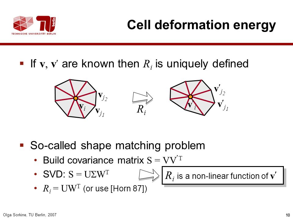Cell deformation energy