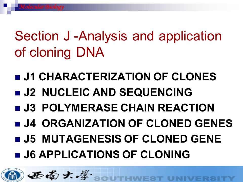 Section J -Analysis and application of cloning DNA