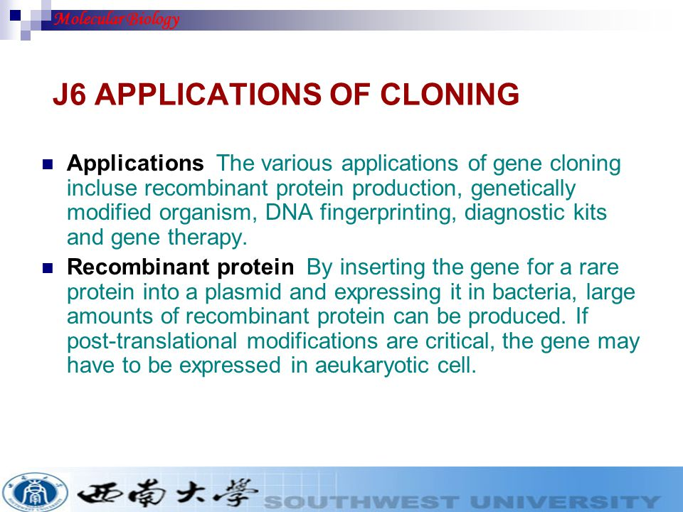 J6 APPLICATIONS OF CLONING