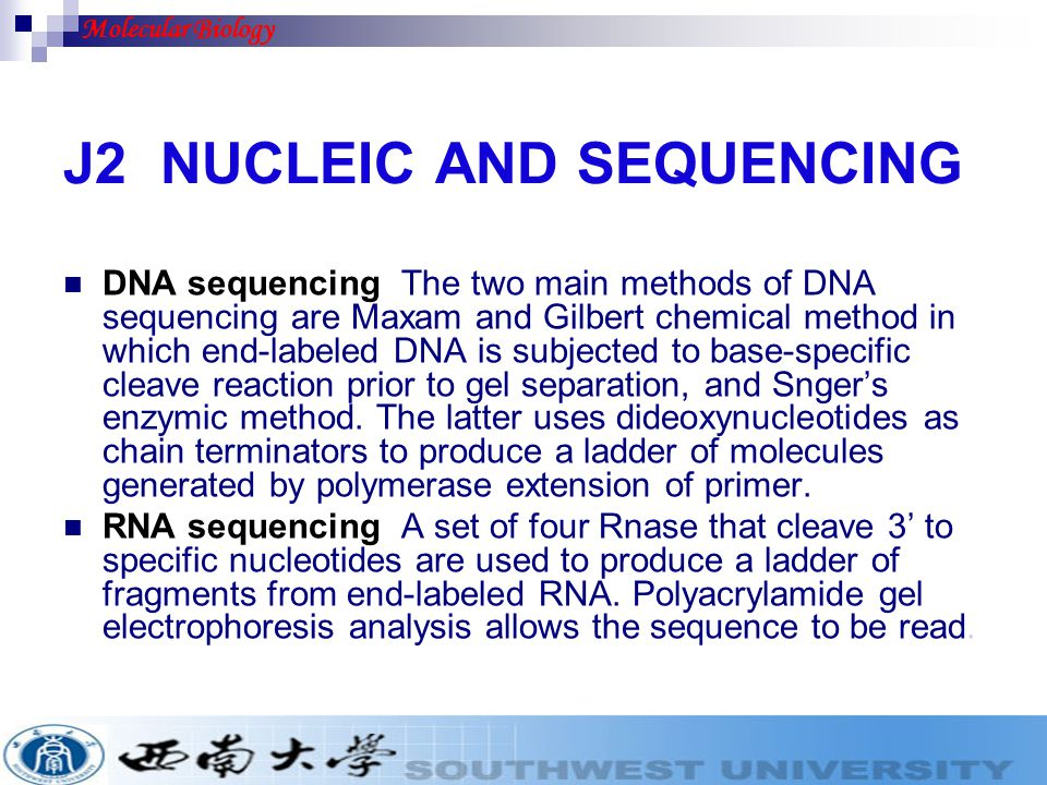 J2 NUCLEIC AND SEQUENCING