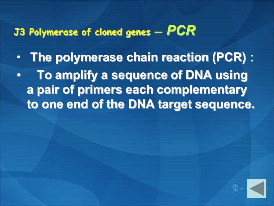 J3 Polymerase of cloned genes — PCR