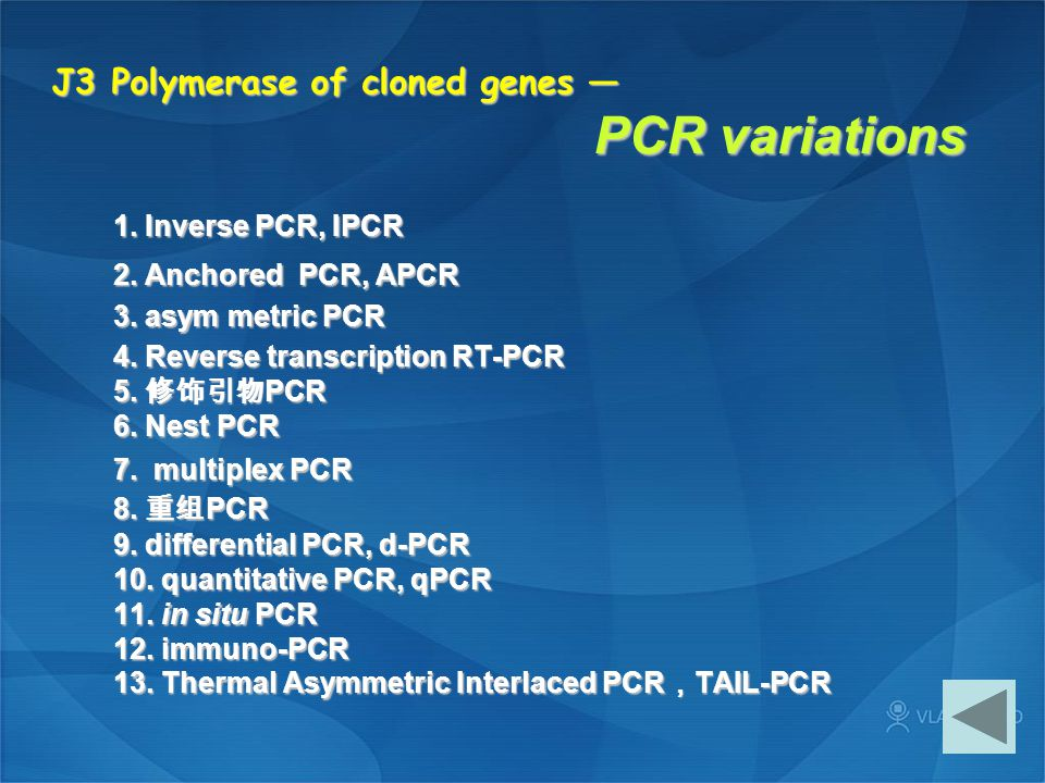 J3 Polymerase of cloned genes — PCR variations