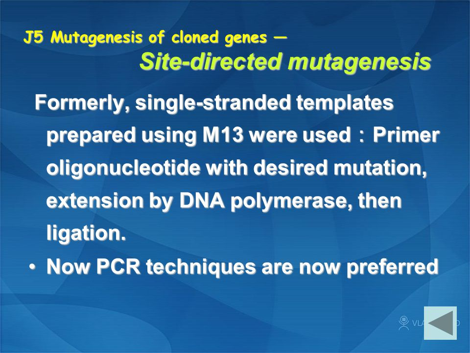 J5 Mutagenesis of cloned genes — Site-directed mutagenesis