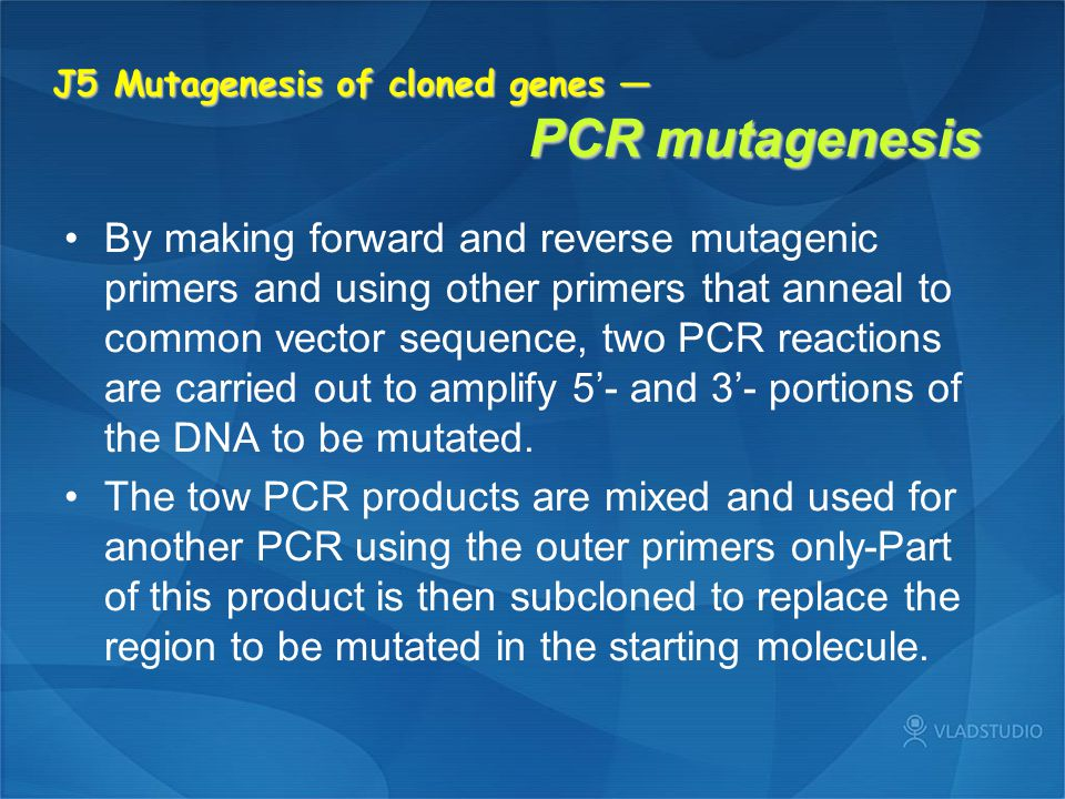 J5 Mutagenesis of cloned genes — PCR mutagenesis