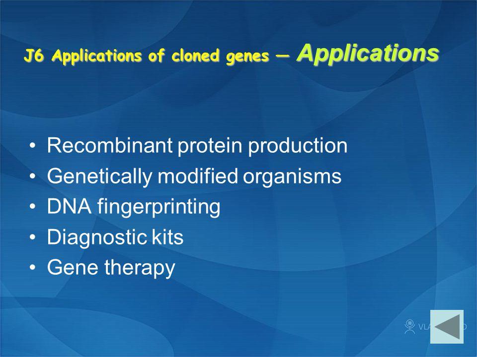 J6 Applications of cloned genes — Applications