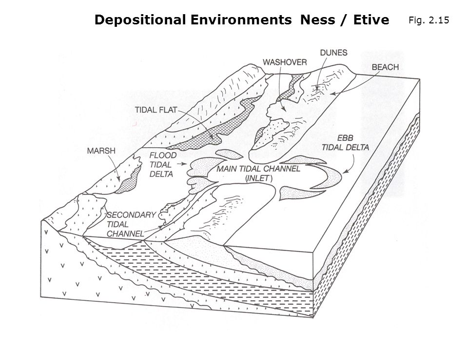 Depositional Environments Ness / Etive