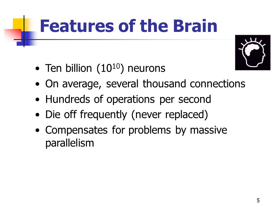Features of the Brain Ten billion (1010) neurons