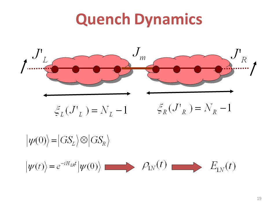 Quench Dynamics