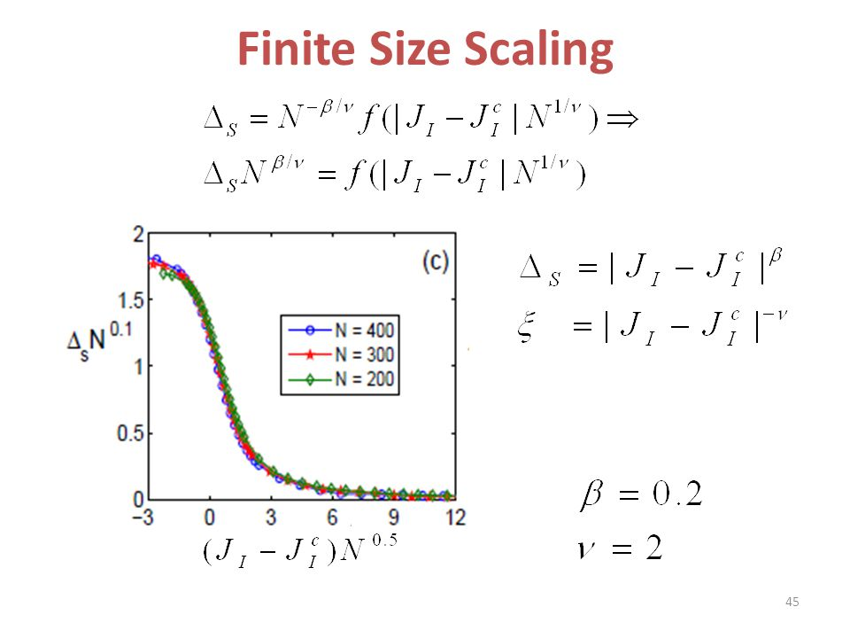 Finite Size Scaling