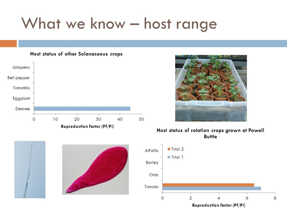 What we know – host range