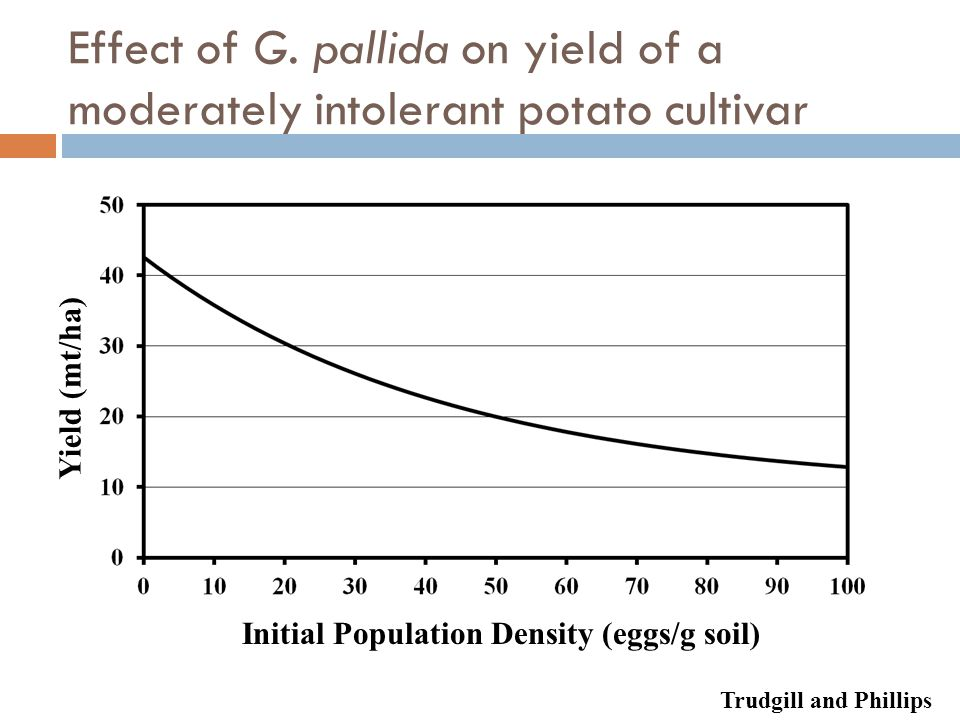 Effect of G. pallida on yield of a moderately intolerant potato cultivar