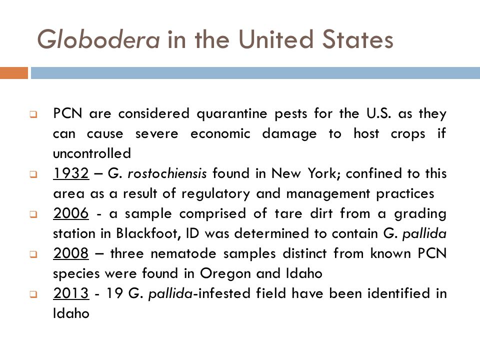 Globodera in the United States