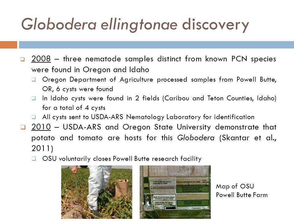 Globodera ellingtonae discovery