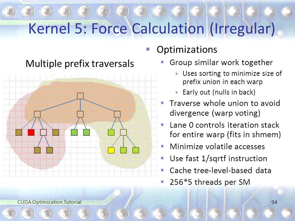 Kernel 5: Force Calculation (Irregular)