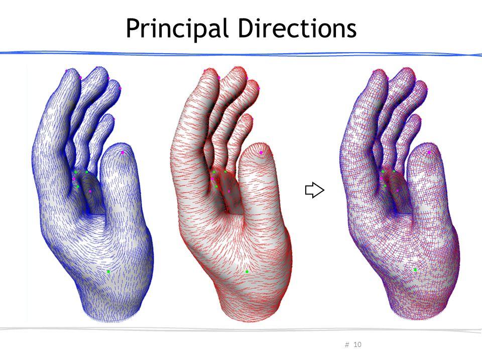 Principal Directions תמונה
