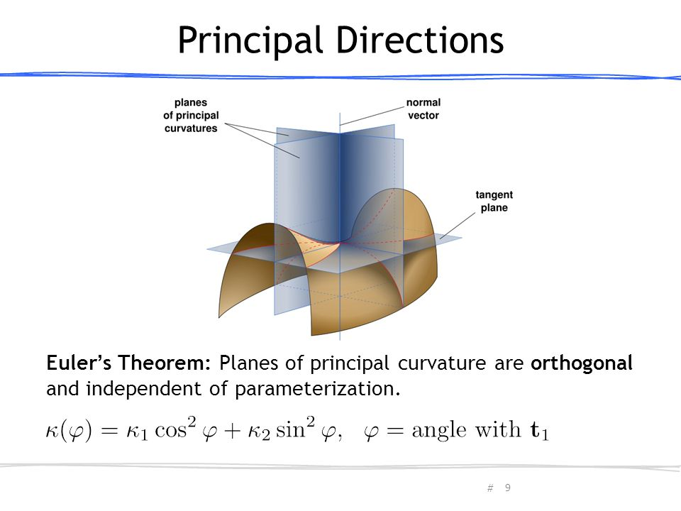 Principal Directions תמונה. Euler's Theorem: Planes of principal curvature are orthogonal.