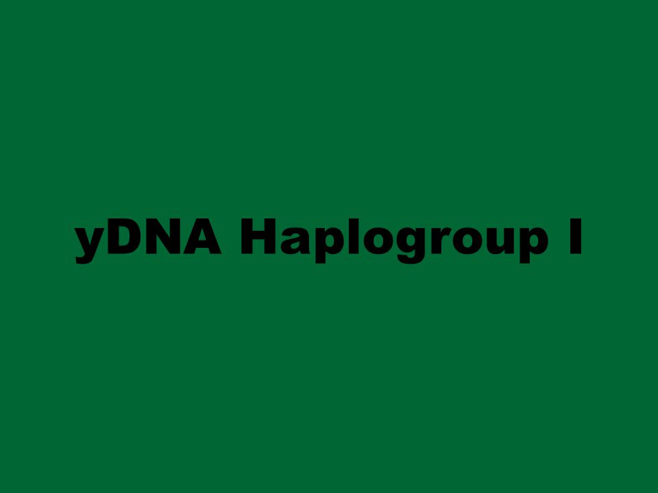 yDNA Haplogroup I