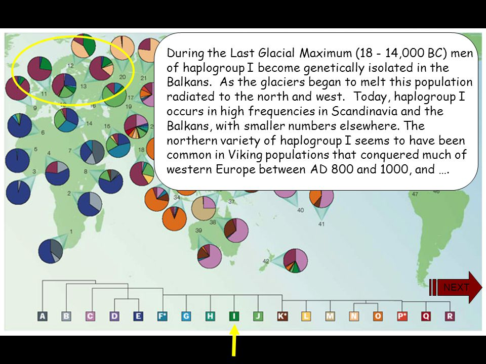 During the Last Glacial Maximum (18 - 14,000 BC) men